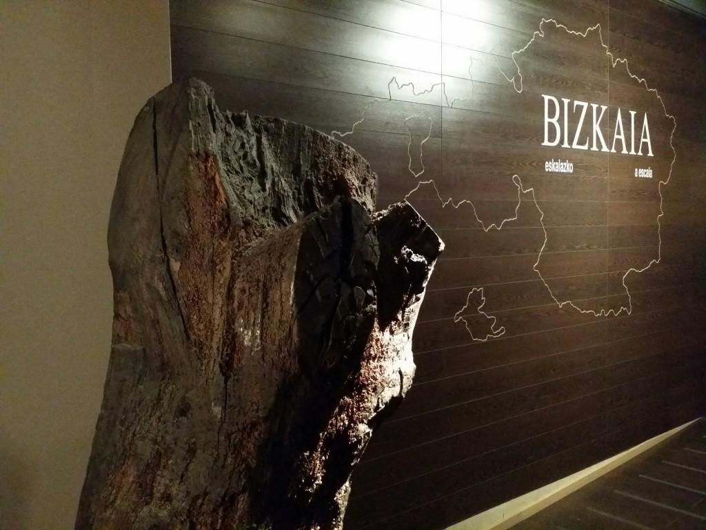 Fragmenteo del arbol de Gernika en el Museo Vasco