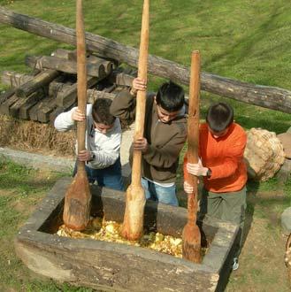 Niños en Sagardoetxea
