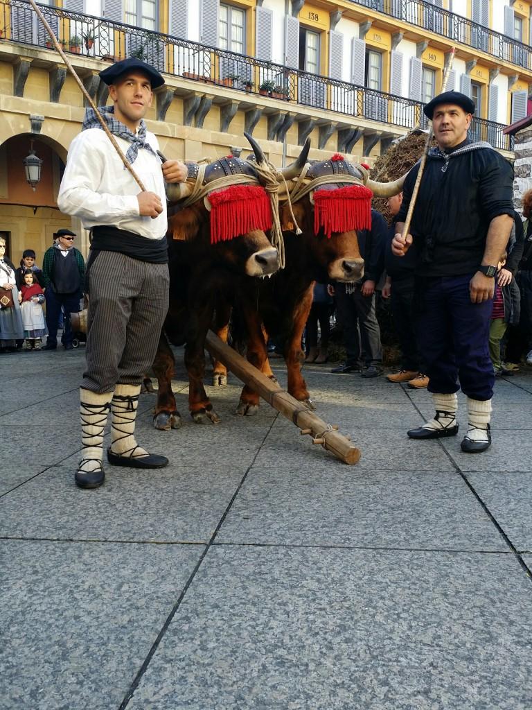 Carro de bueyes, Sagardo Apurua