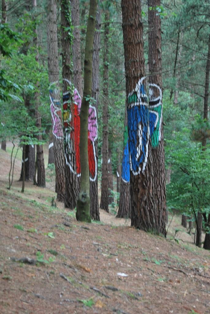 Motos en el bosque de Oma