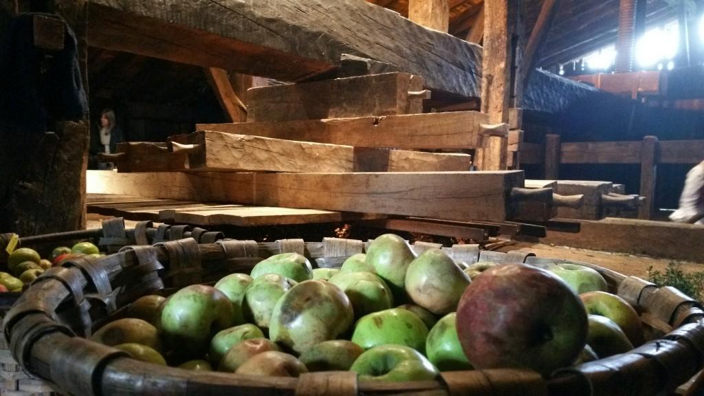 manzanas-y-prensa-en-igartubeiti