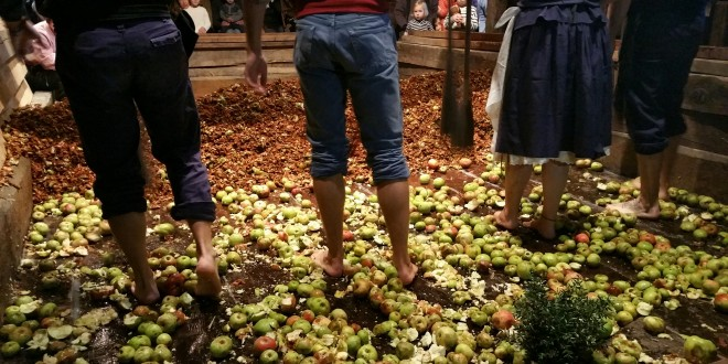 pegando-la-manzana