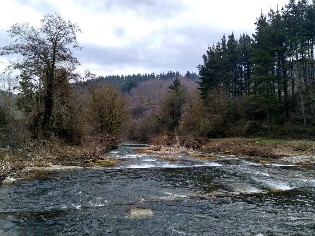 Río Nervión desde la Vía verde del Parque Lineal del Nervión