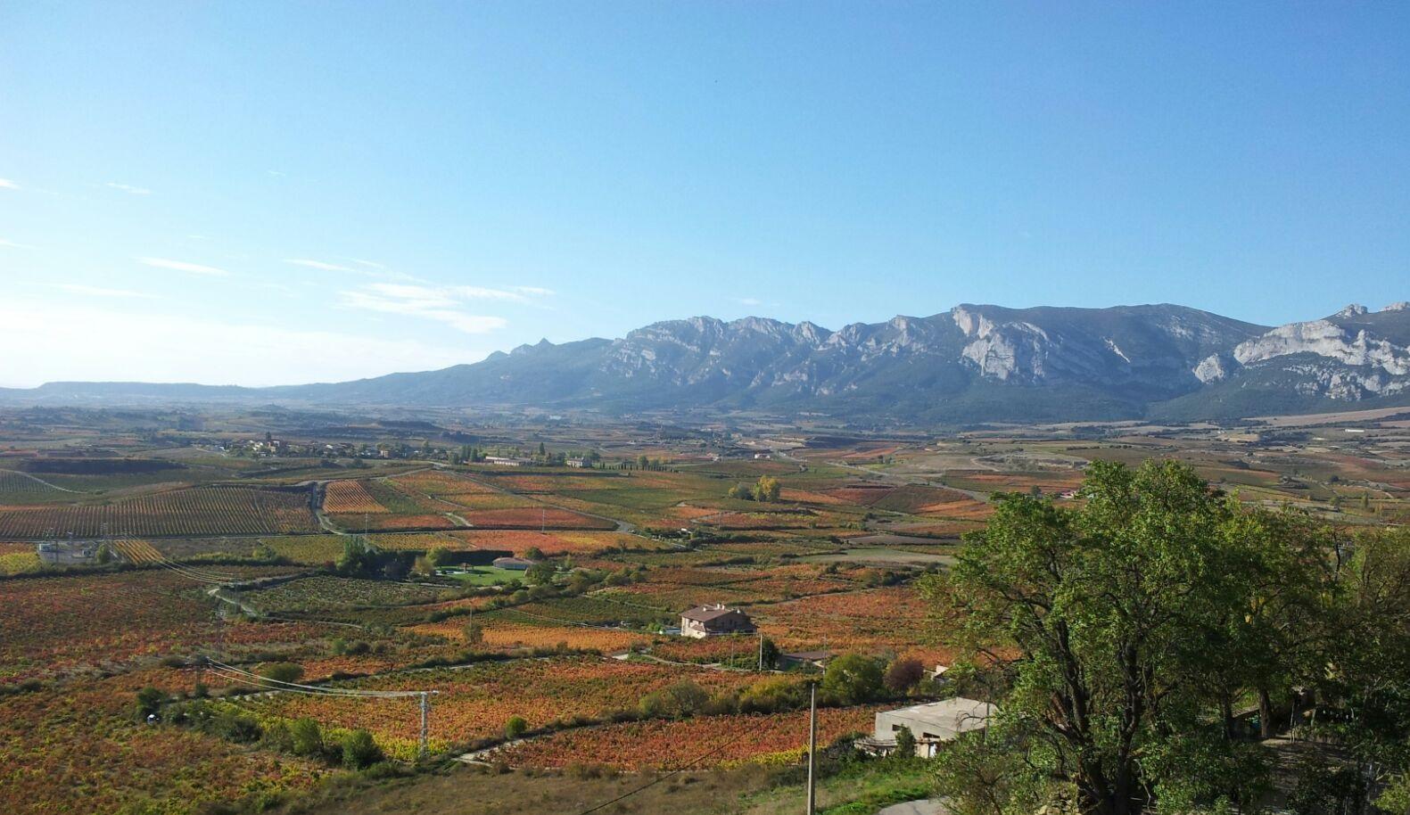 Resultado de imagen de Vistas desde Laguardia: