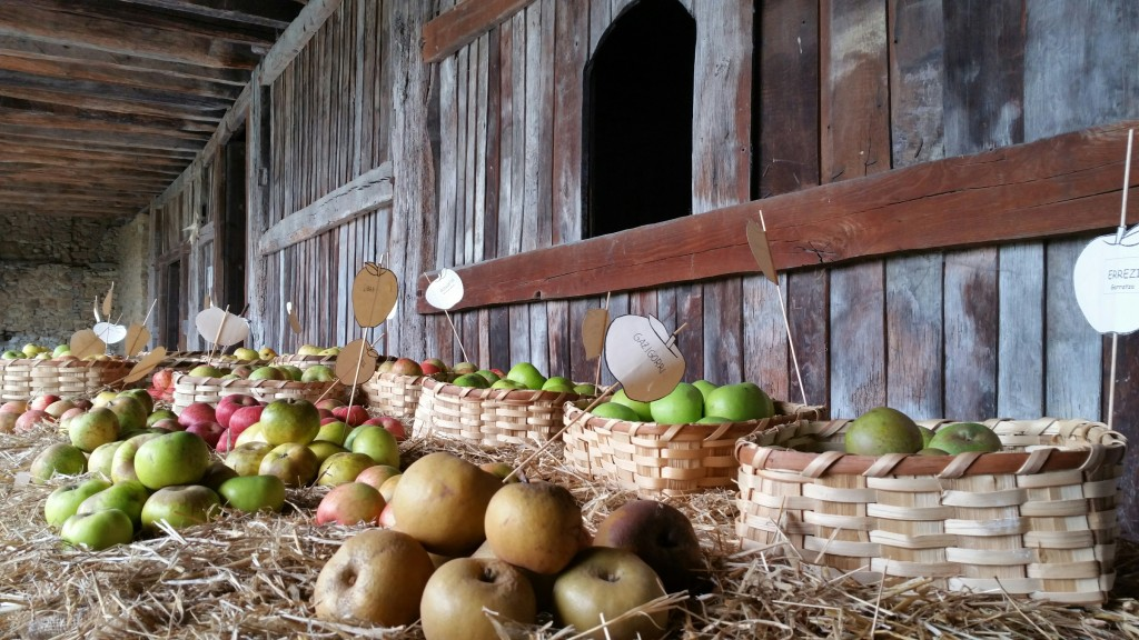 manzanas-en-igartubeiti