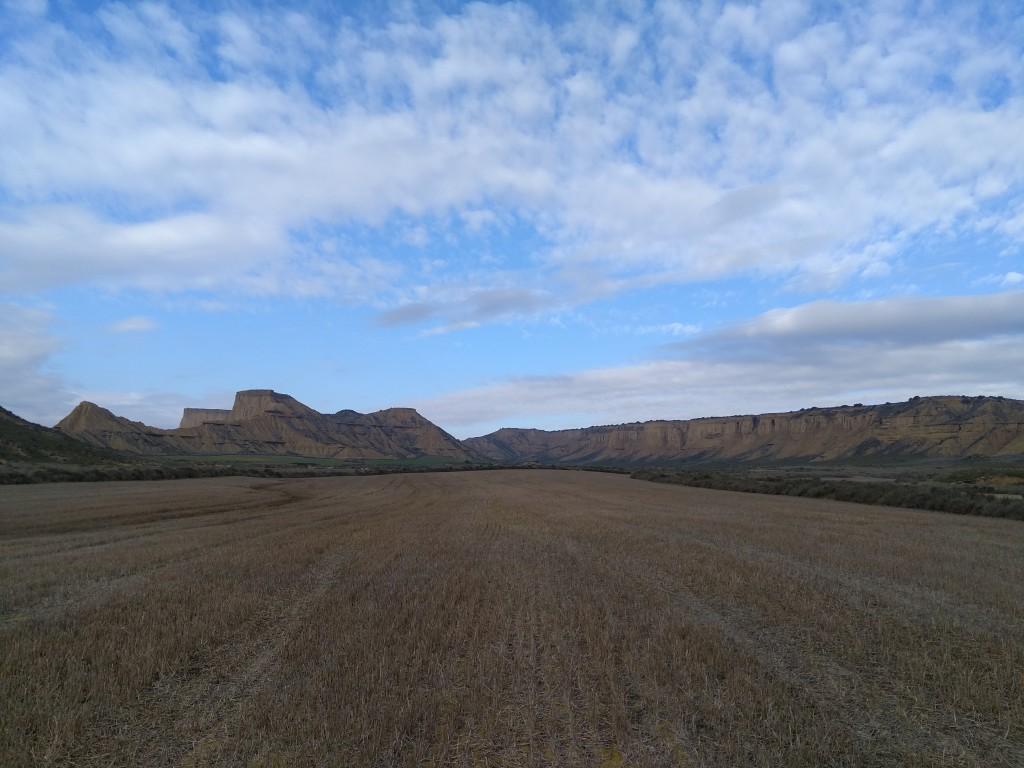 campos-de-cultivo-en-las-bardenas-reales