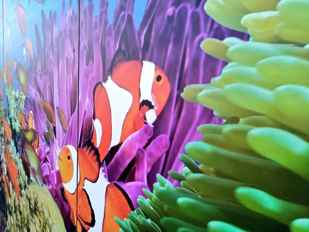 Fachada Getxo Aquarium