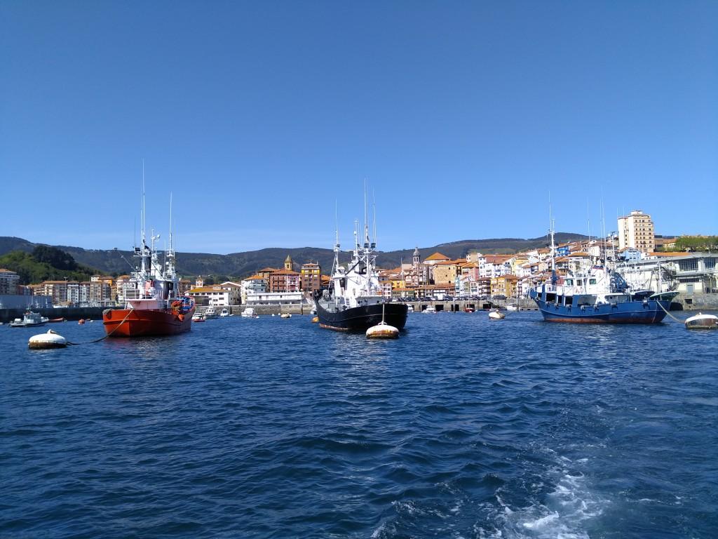 Barcos pesqueros en Bermeo, Hegaluze