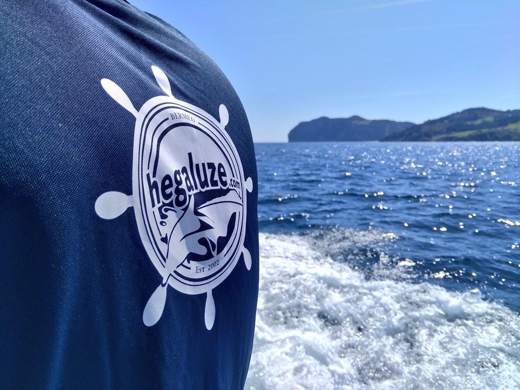 Hegaluze logo