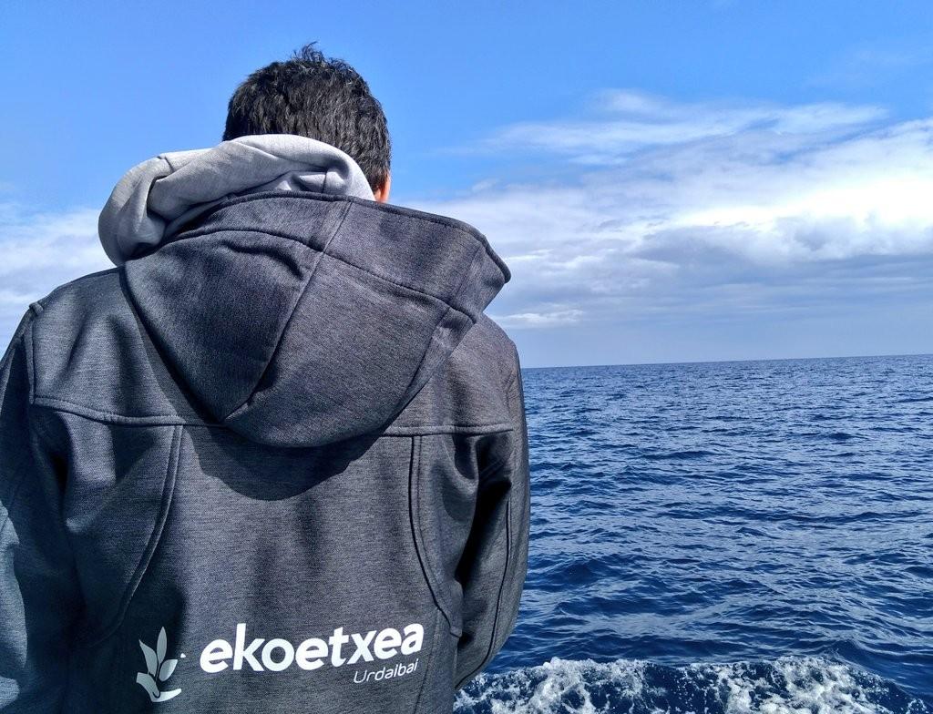 Ekoetxea salida al mar, cetaceos