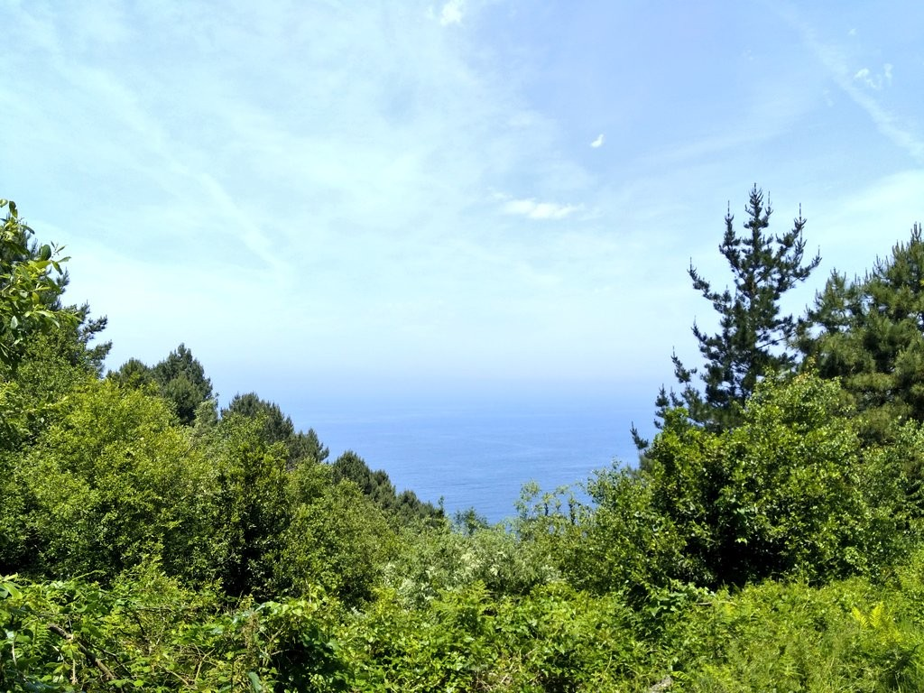 Mar desde ruta Ulia-Pasaia por el faro de la plata