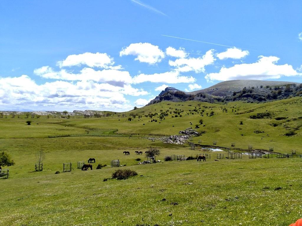 Vistas Campas de Arraba, Gorbeia