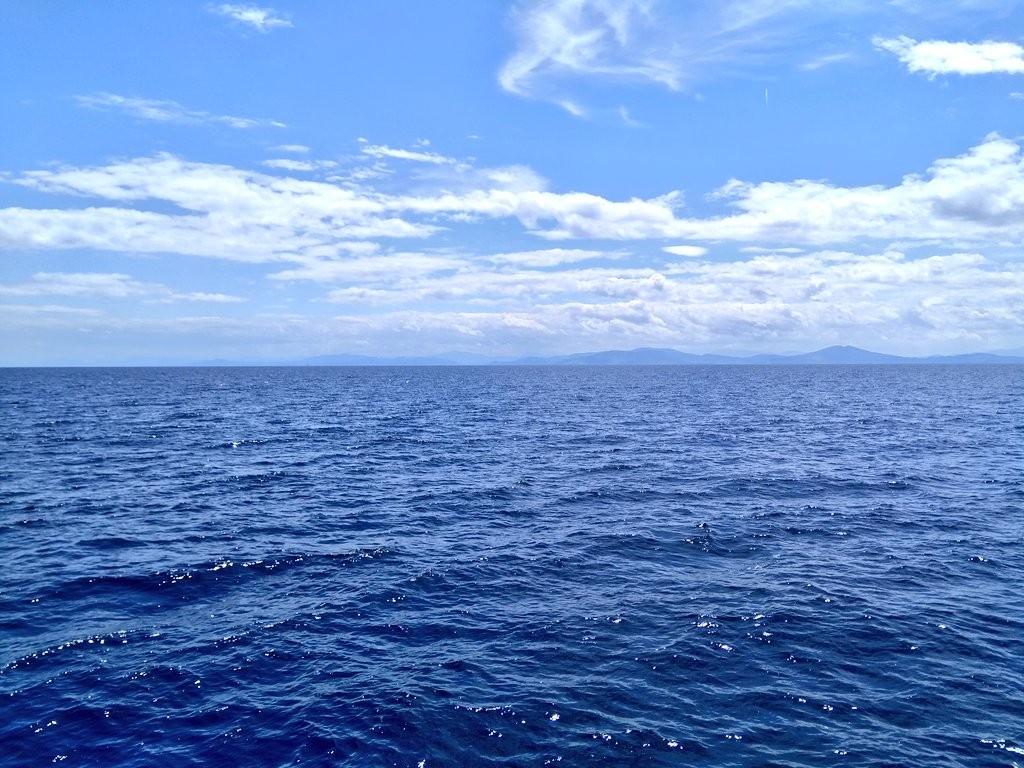 Vistas desde Hegaluze, cetaceos, delfines y ballenas