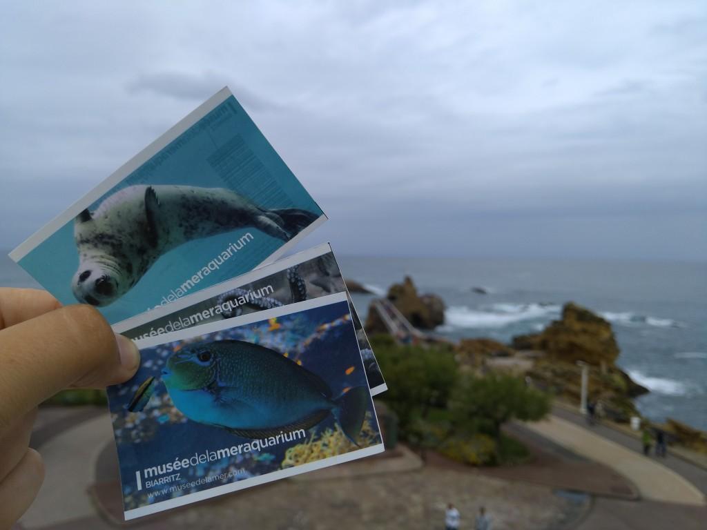 3 Entradas Aquarium de Biarritz