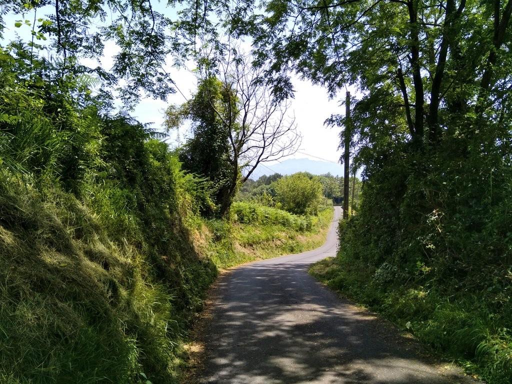 Camino inicial ruta Ulia-Pasaia por el faro de la plata