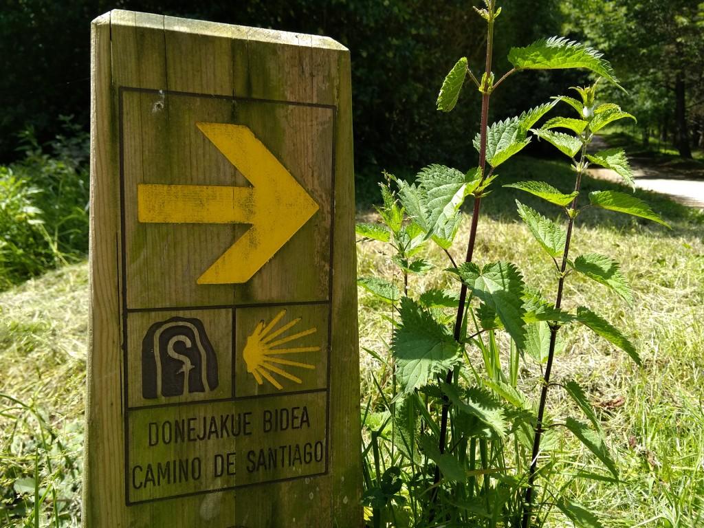 Cartel camino de santiago, ruta Faro de la plata, ruta Ulia - Pasaia