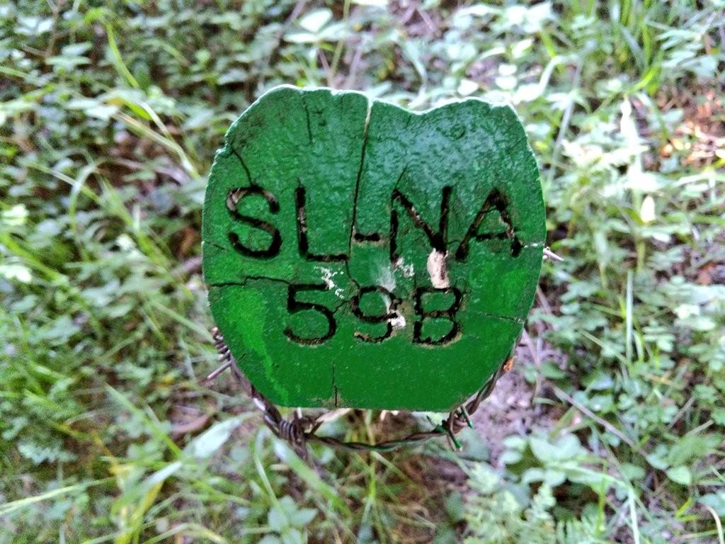 Señal ruta 59b, selva de irati, pirineo navarro