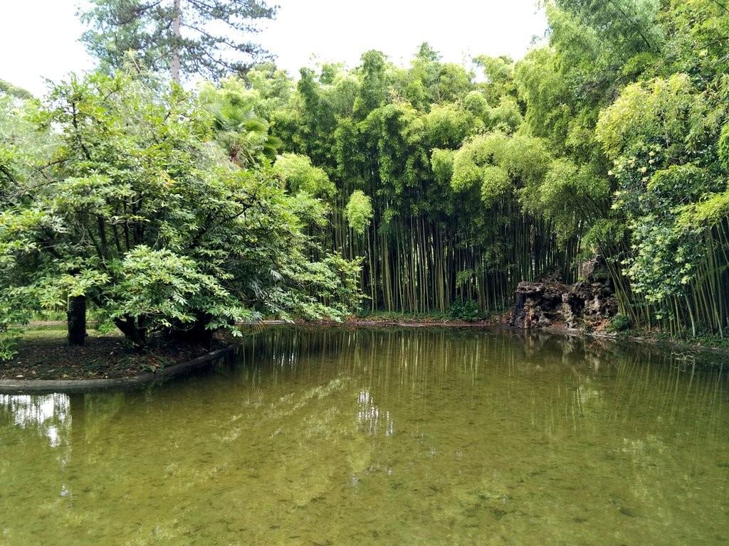Lago del Jardín del Parque Natural del señorio de Bertiz
