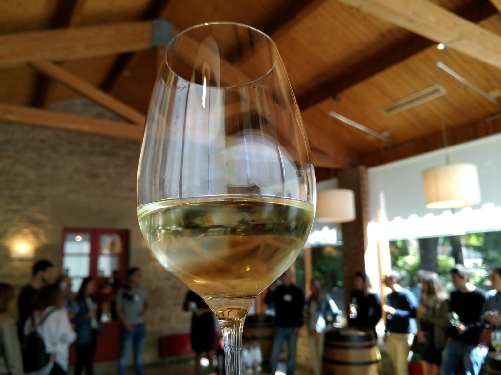 Cata de vino blanco en la bodega Marqués de Riscal