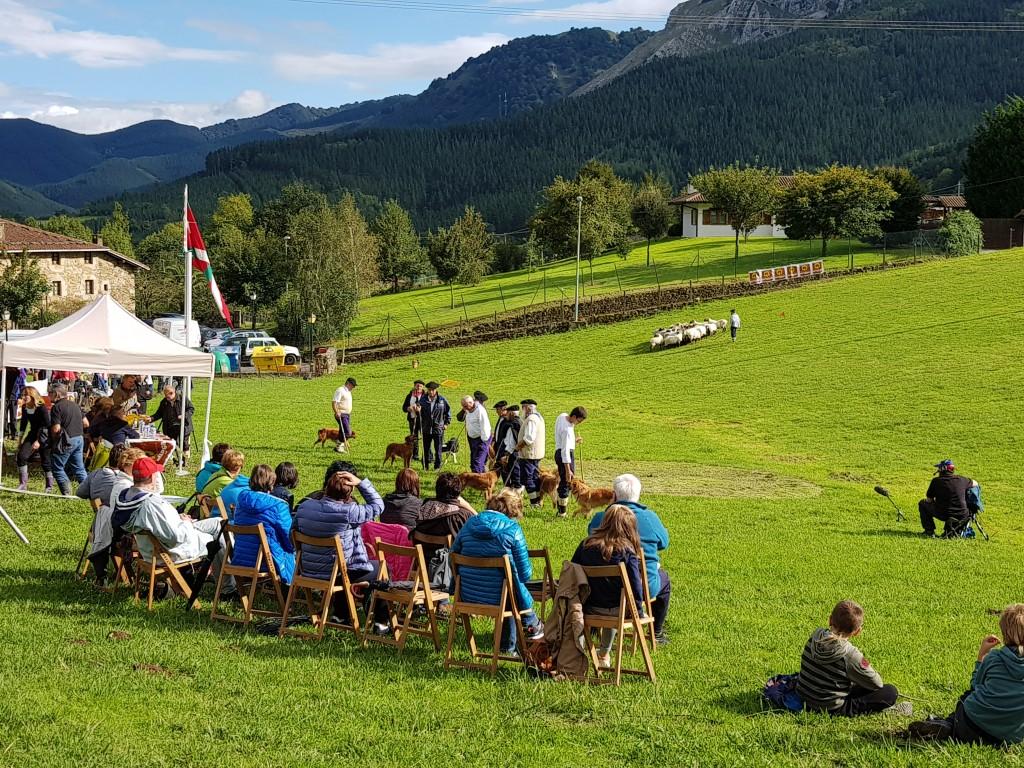 Jurado y pastores, Campeonato de perros pastores de Euskal Herria