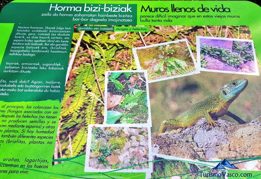 Panel informativo, Via verde de Arrazola (Axpe Atxondo)