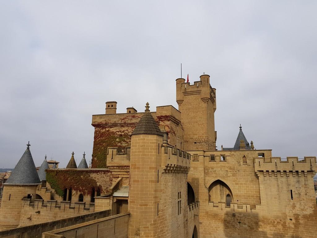 Panoramica del castillo de Olite