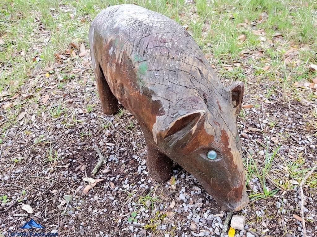 Jabali tallado en el Jardín Botánico de Santa Catalina
