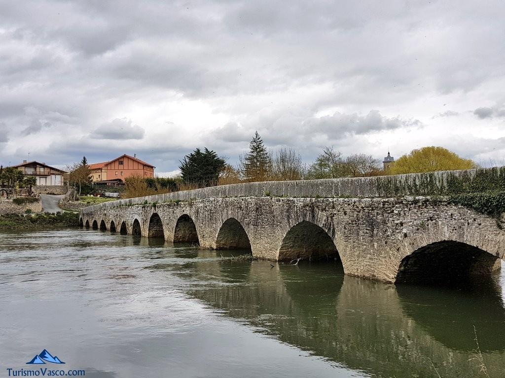 Puente de trespuentes desde el rio zadorra