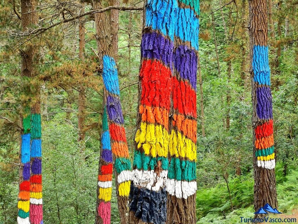 Arcoiris en el Bosque de Oma, el Bosque Pintado