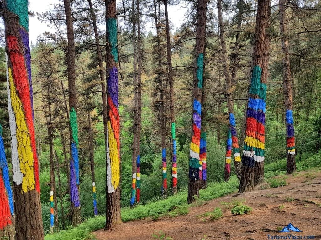 Bosque de oma, bosque pintado, colorido