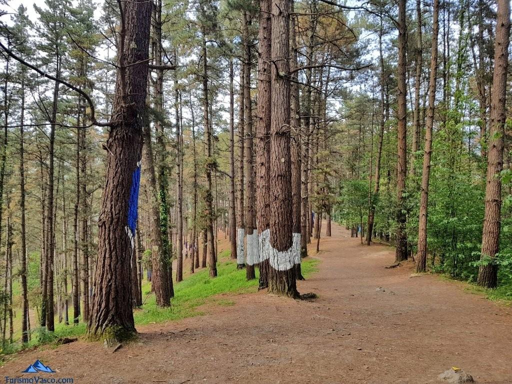 Caminando entre los arboles pintados del bosque de oma