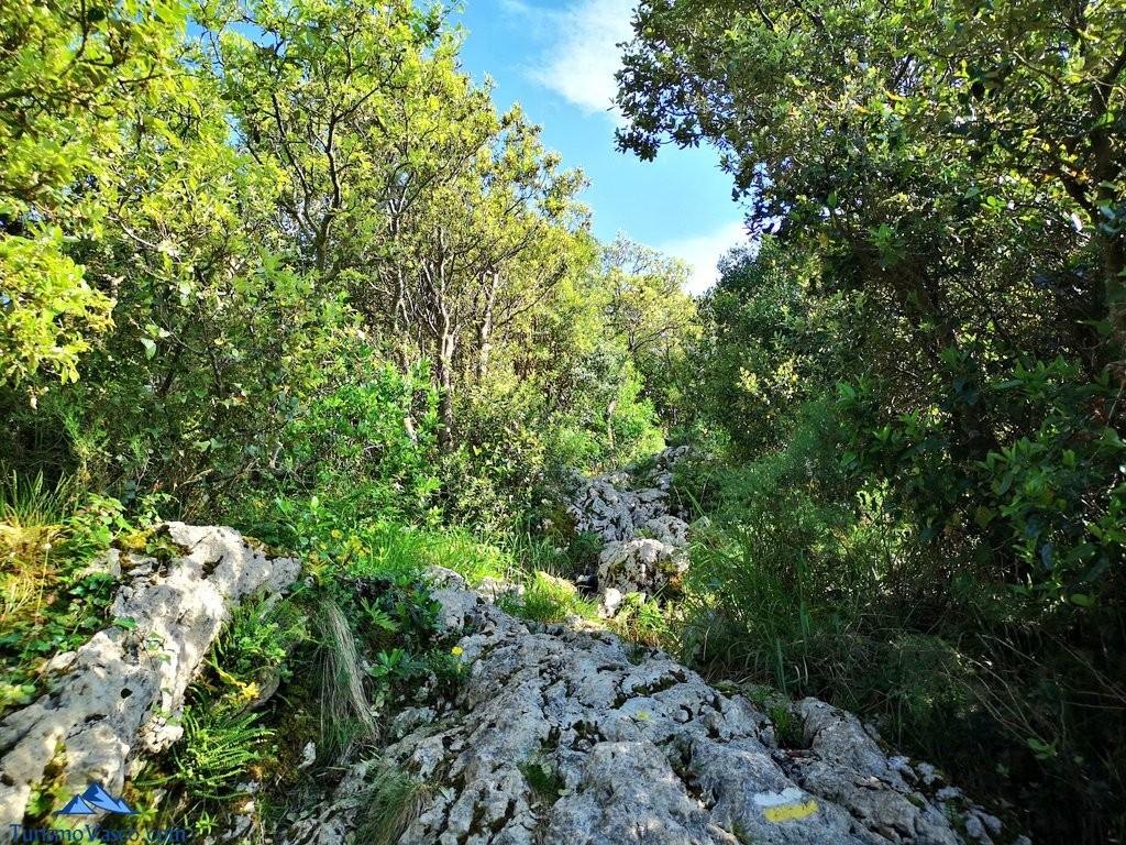 Camino a Atxurkulu, ruta a Ogoño