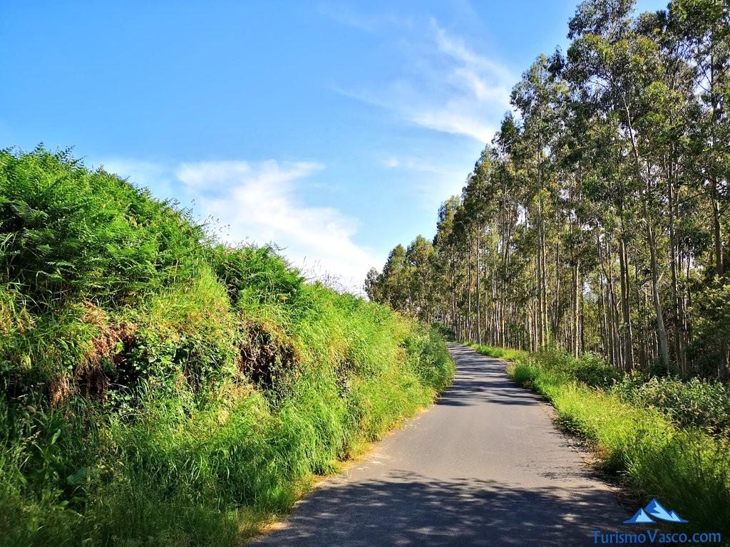 Camino asfaltado en la ruta a Ogoño