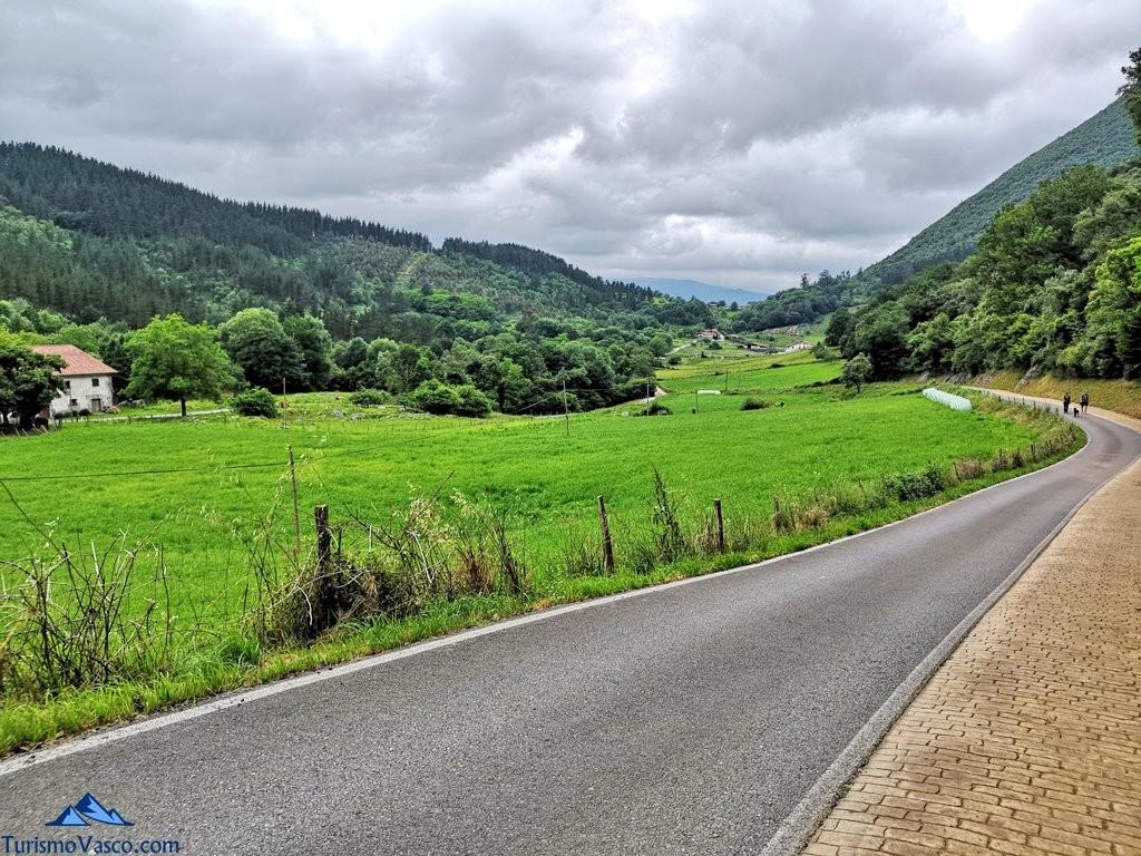 Camino de vuelta del Bosque de Oma, el Bosque Pintado