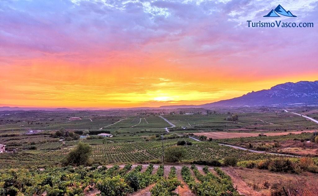 Atardecer, Laguardia, Rioja Alavesa, Euskadi
