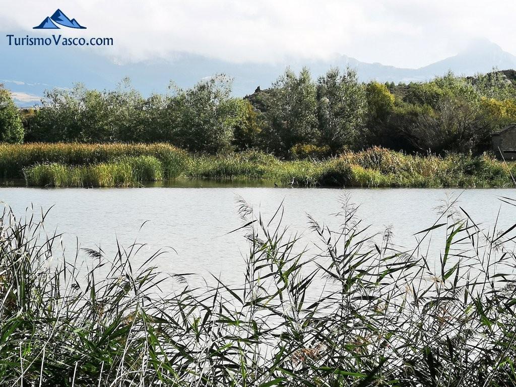 lagunas de laguardia, Rioja Alavesa