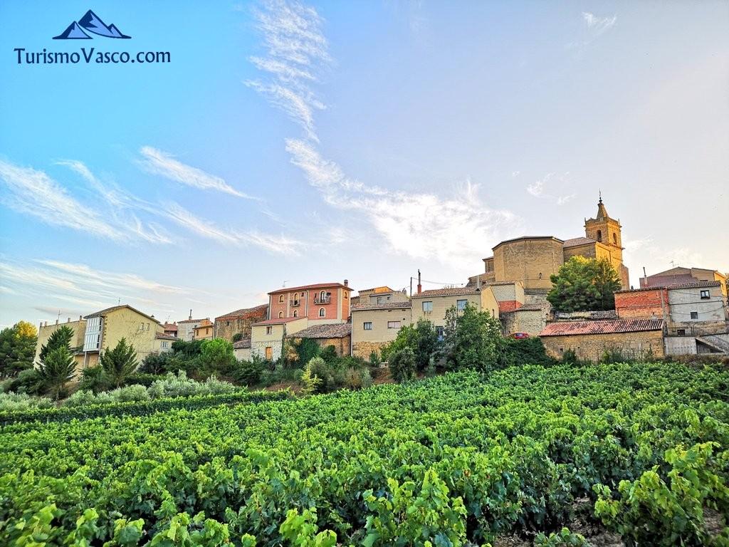 navaridas desde la carretera,, Rioja Alavesa
