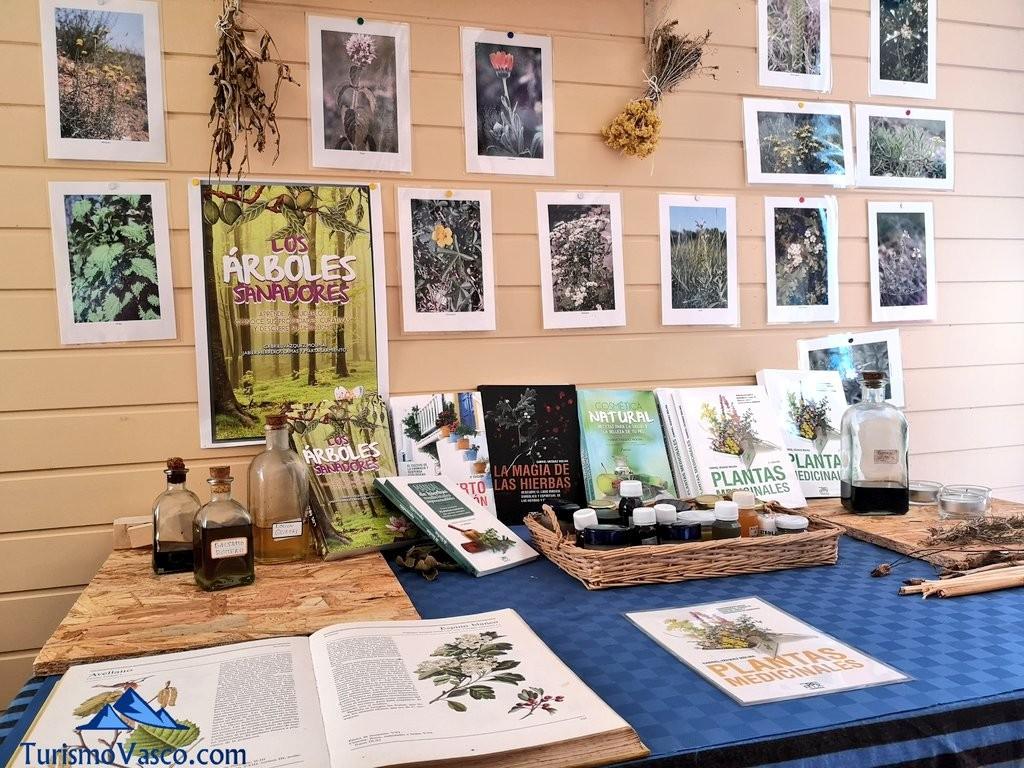 Libros, taller de plantas medicinales en Zeanuri