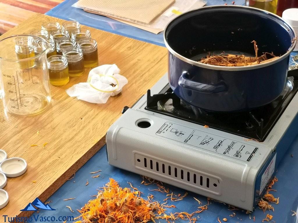 preparación de pomada de sauco, taller de plantas medicinales en Zeanuri