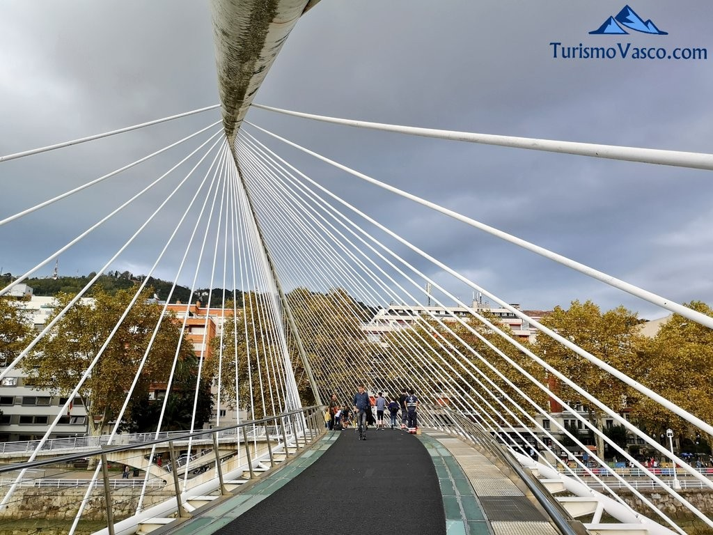 puente Zubizuri al detalle, bilbao