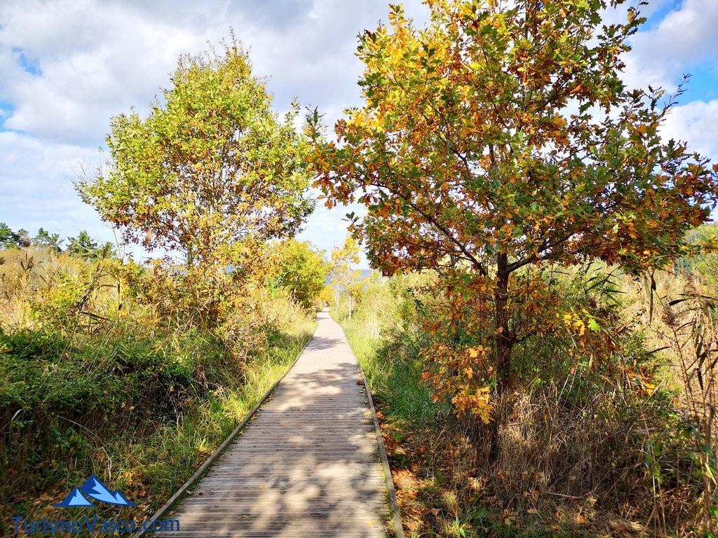 Pasarela de la ruta Urdaibai Gernika Kortezubi