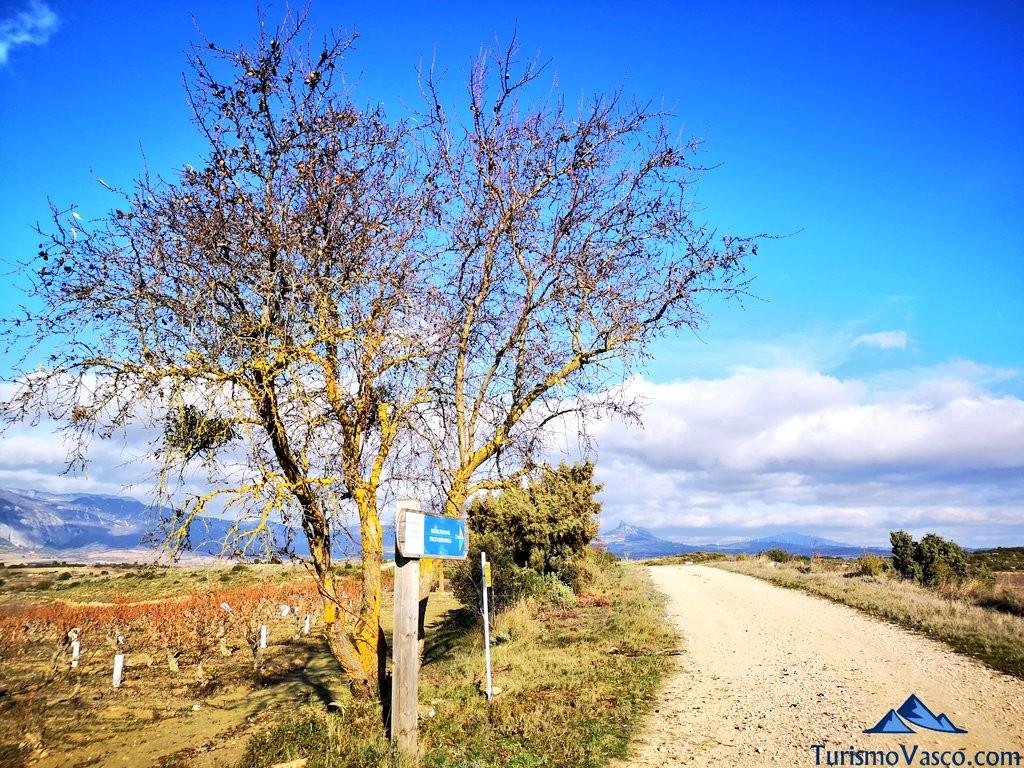 camino ,ruta por Laguardia y sus lagunas