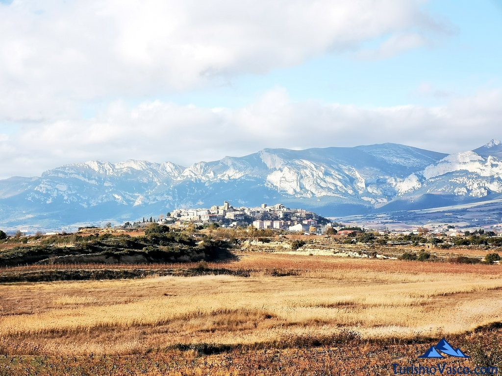 laguardia vista desde la ruta por Laguardia y sus lagunas