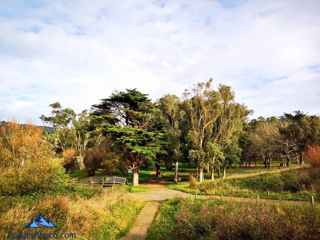 pinar de gorliz, ruta Plentzia Gorliz