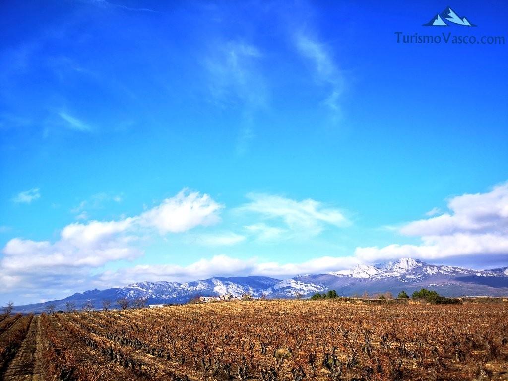 sierra cantabria , ruta por Laguardia y sus lagunas