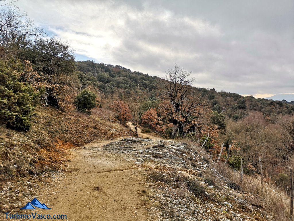 camino , Ruta Okina Saseta
