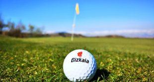 pelota de golf meaztegi, bizkaia, La Arboleda, golf en Bilbao