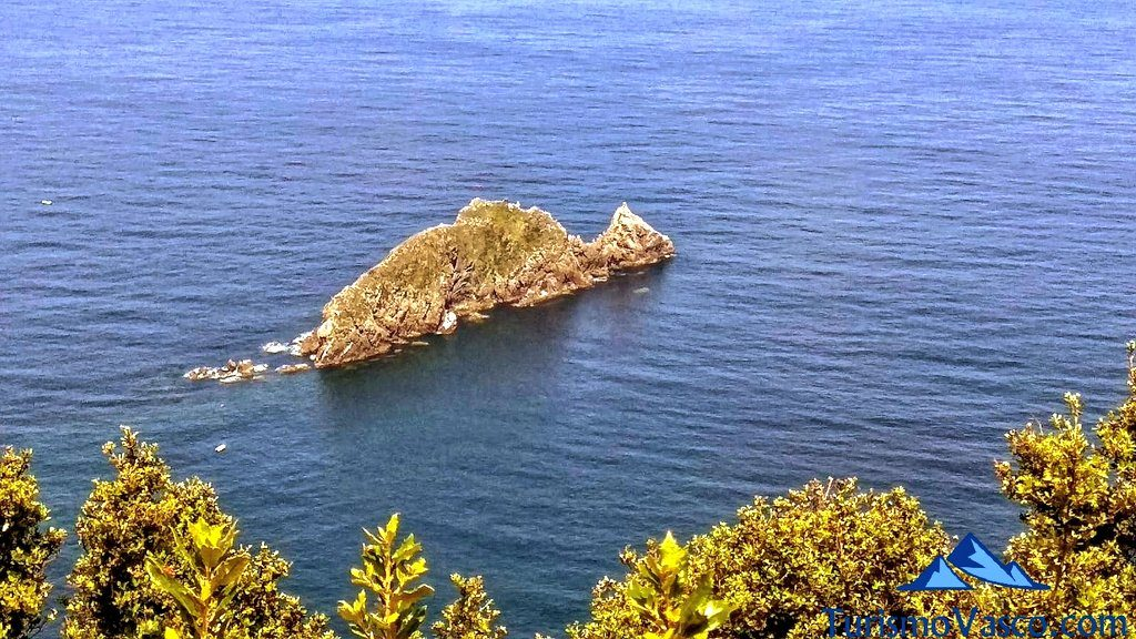 isla de Billano, el dragon gorliz