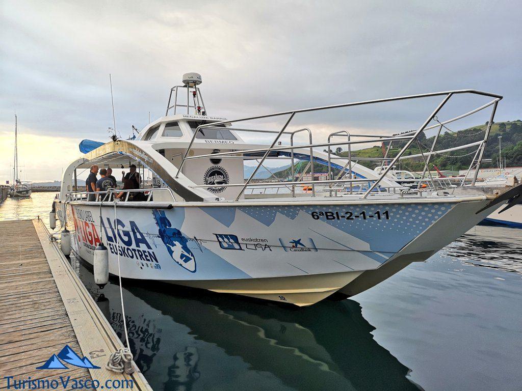 barco, Ver ballenas en Euskadi