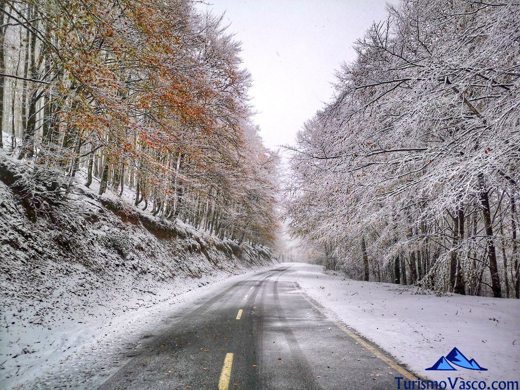 carretera pirineo navarro, quinto del real